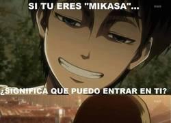 Enlace a Mikasa en su casa