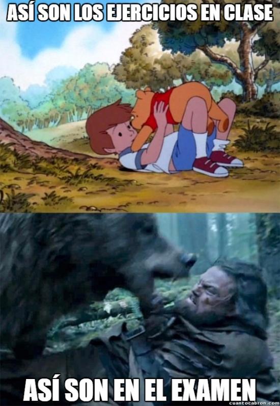 Bear_leo - Siempre pasa lo mismo
