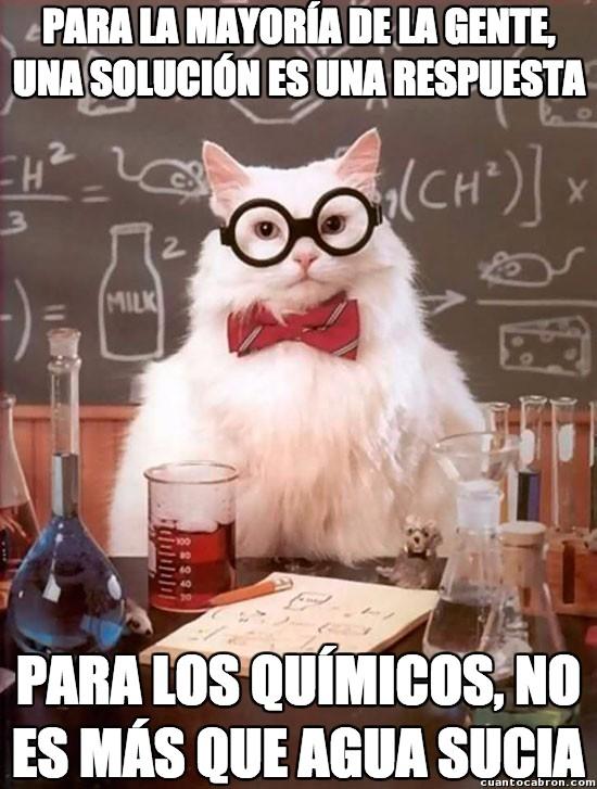 Gato_quimico - Así es como lo ven los químicos