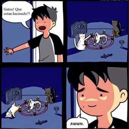 Otros - Son animales malvados... pero adorables