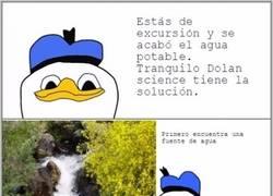 Enlace a Dolan Science y su creaciones....
