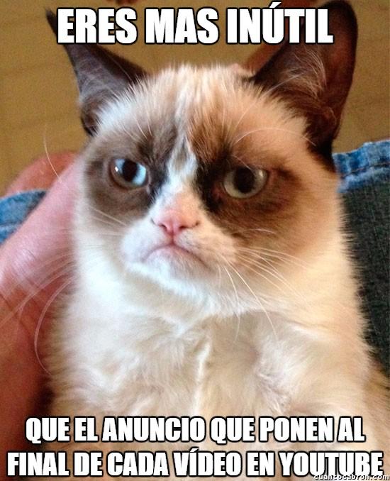 Grumpy_cat - Lo mas inútil jamás creado