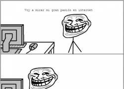 Enlace a Los trolls también sufren en internet