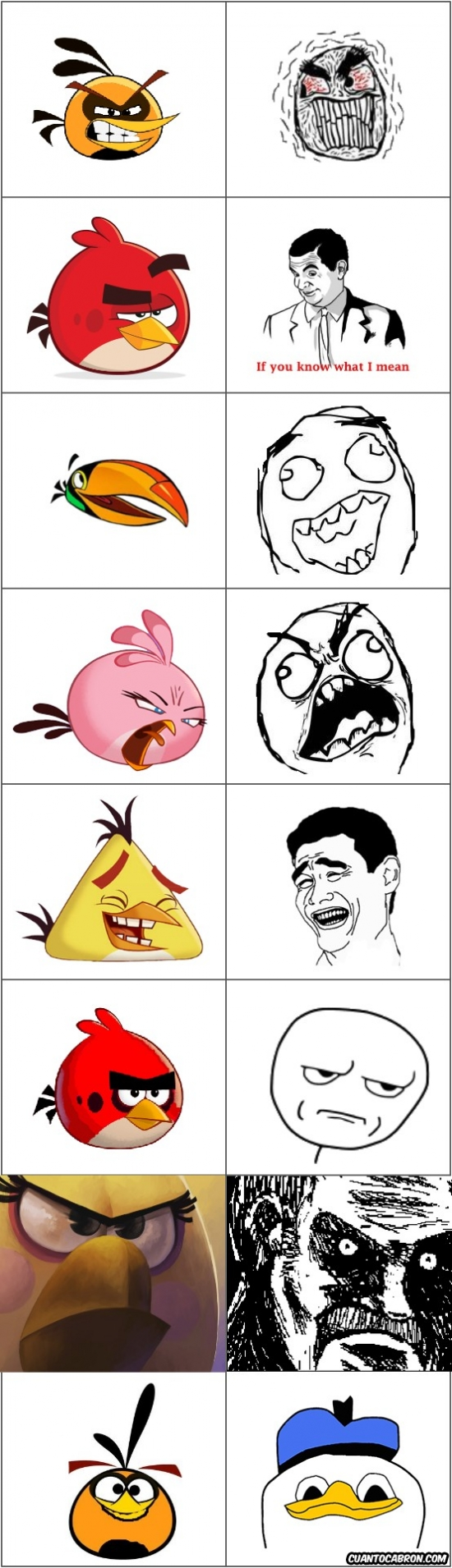 Mix - Angry Birds y sus memes