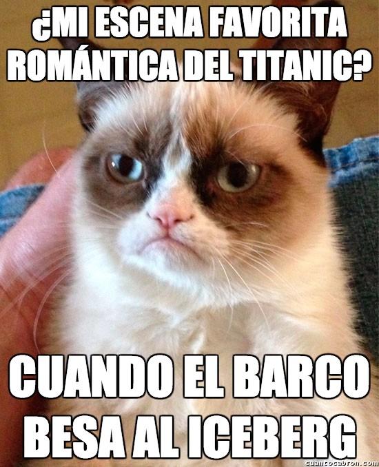 besar,Grumpy Cat,iceberg,romanticismo,Titanic