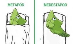 Enlace a La evolución de Metapod