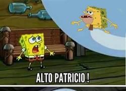 Enlace a ¡Patricio quiere más!