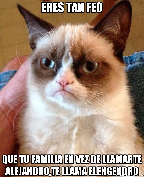 Grumpy_cat - Imagina si es feo...