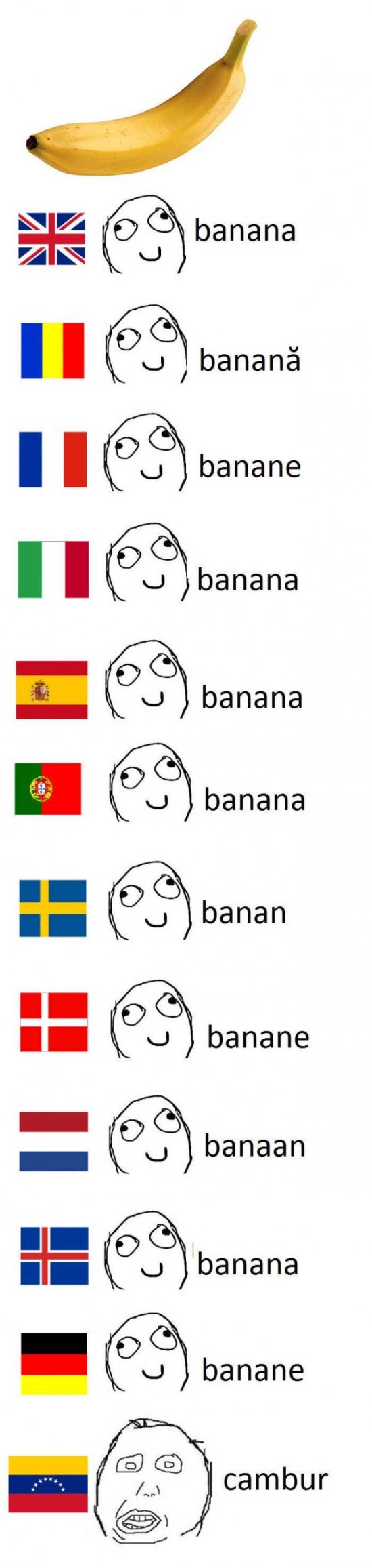 Otros - Venezuela y su traducción