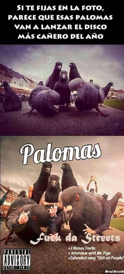 Meme_otros - Palomas rockeras