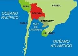 Enlace a Argentina tras la Copa América