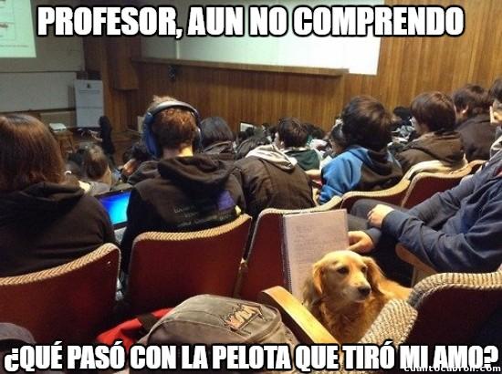 alumno,comprender,pelota,perro,profesor,tirar