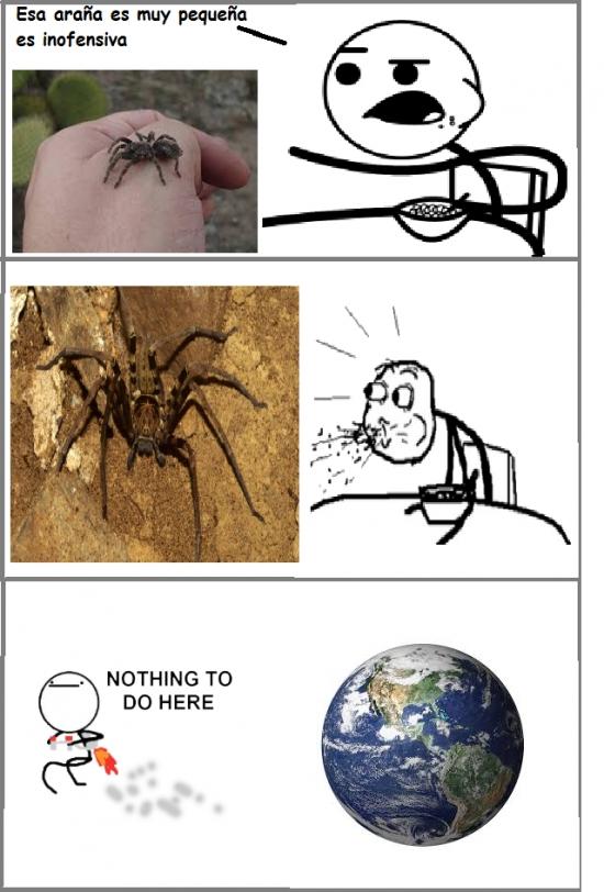 Nothing_to_do_here - Nunca confíes en el tamaño de una araña