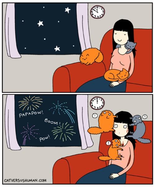 Otros - La cruel realidad de tener mascotas al momento que llegan las fiestas