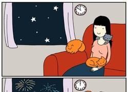 Enlace a La cruel realidad de tener mascotas al momento que llegan las fiestas