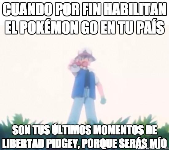 Meme_otros - Y es que es el único Pokémon que aparece...