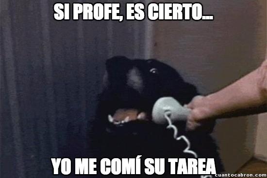 Meme_otros - Mi tarea :(