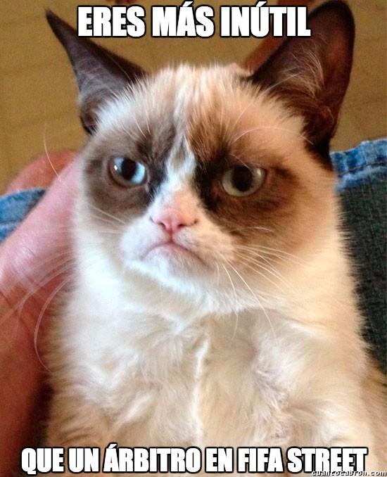 Grumpy_cat - No hay nada más inútil
