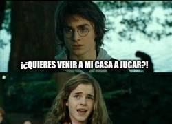 Enlace a Harry aprendiendo a trolear a Hermione