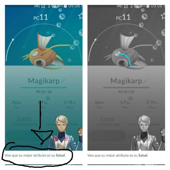 Meme_otros - La dura realidad de Magikarp