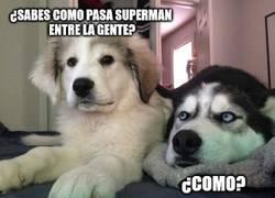 Enlace a Superman educado