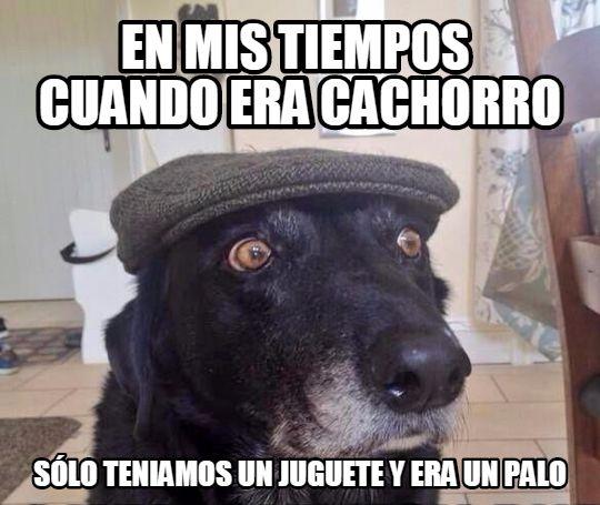 En_mis_tiempos - El chucho yayo