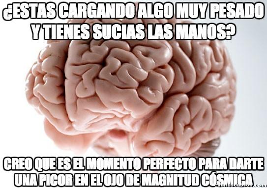 Cerebro_troll - No se puede ser más troll