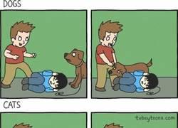 Enlace a Y es por eso que el perro es el mejor amigo del hombre
