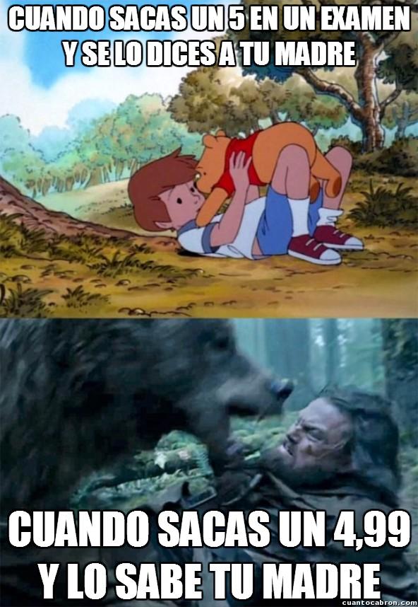 Bear_leo - Esto lo has vivido y lo sabes...
