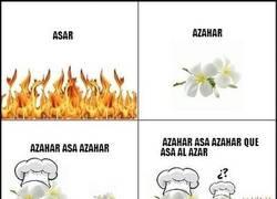 Enlace a Azahar Asa al Azar