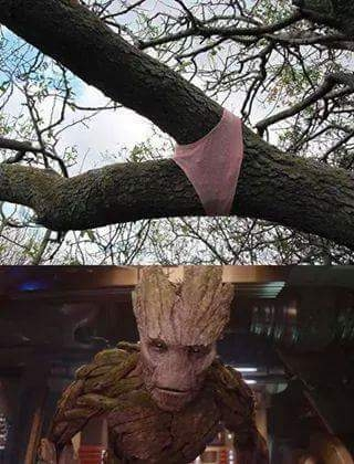 Meme_all_the_things - A Groot le gusta esto