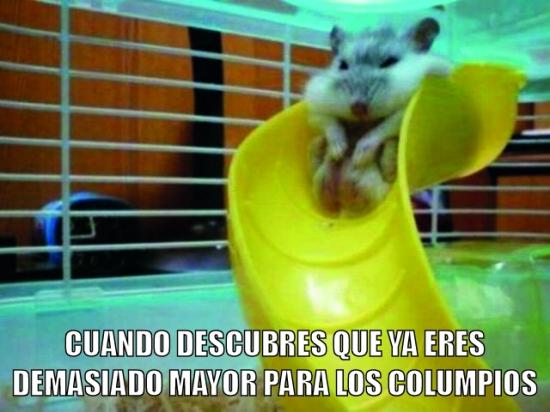 Meme_otros - Oh, vaya :(