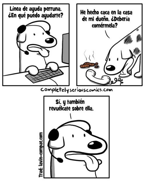 Otros - Vaya consejos se dan los perros