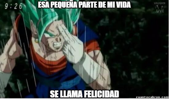 Meme_otros - Vegetto ya está aquí
