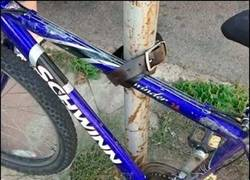 Enlace a Más vale quedarse sin pantalones que sin bici