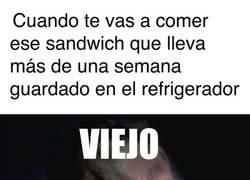 Enlace a Ese sandwich aún era para comer