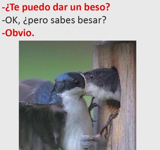 Meme_otros - No es fácil besar