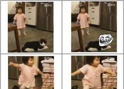 Enlace a Cuando tu gato es un troll
