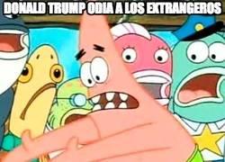 Enlace a No entiendo a Trump