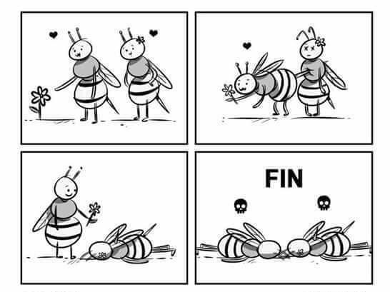 Otros - Desventajas de ser abejas