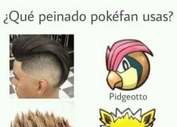 Enlace a Pokémon manda en la moda de los peinados