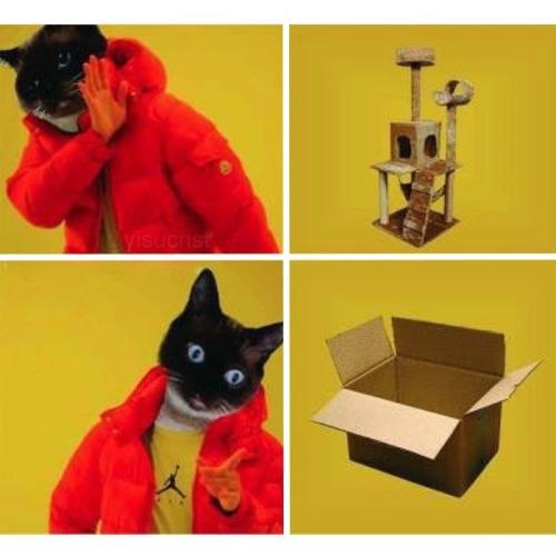 Meme_otros - El regalo que desea cualquier gato