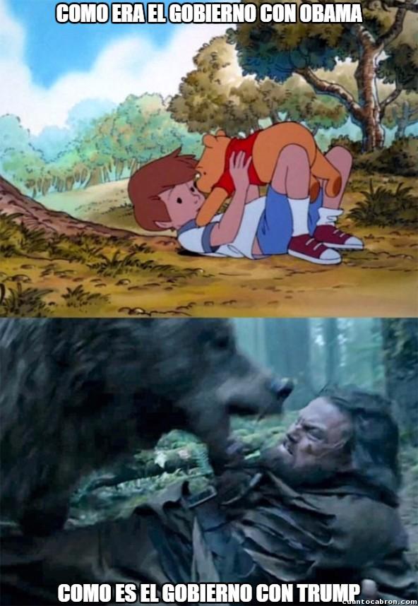 Bear_leo - Hay muchas diferencias...