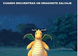 Enlace a La pesadilla de todo jugador de Pokémon Go