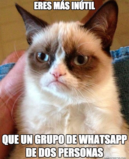 Grumpy_cat - Se disuelve en 3,2,1...