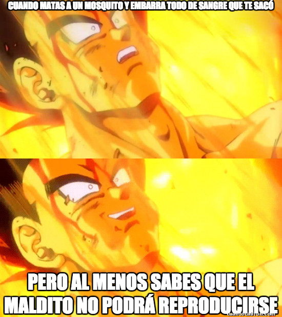 Meme_otros - Malditos bichos...