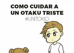 Enlace a Como cuidar a un Otaku