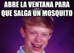 Enlace a Cuando Bad Luck Brian intenta echar a un mosquito
