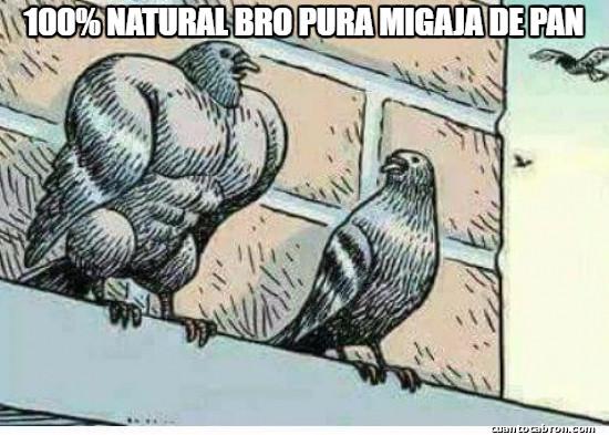 Meme_otros - El gimnasio de las palomas