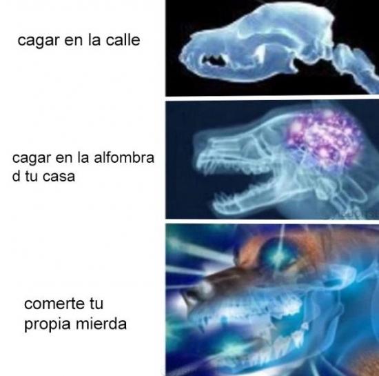 cerebro,meme
